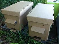 ящики для перевозки пчёл купить в Ростове-на-Дону