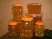 мёд купить в С-Пб