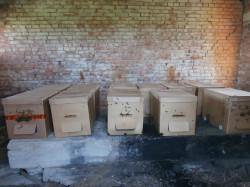 Картонная пасека в брошенном строении