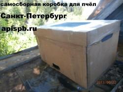 apispb.ru