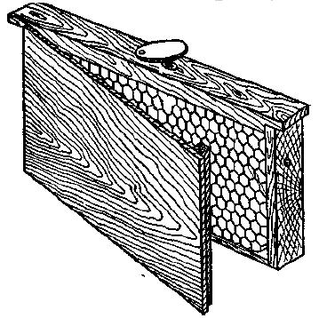 нуклеус на одну рамку