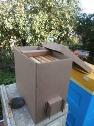 пакет для перевозки пчёл на 4 и 6 рамок